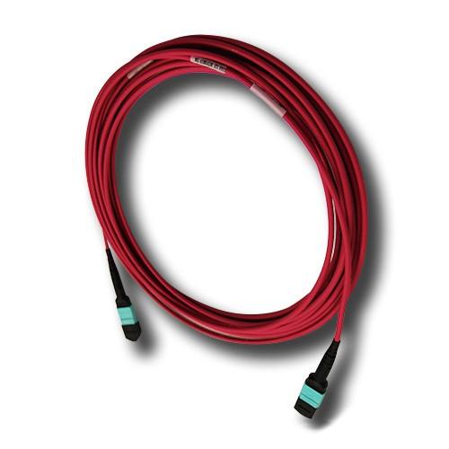 Violet OM4 MTP Lead